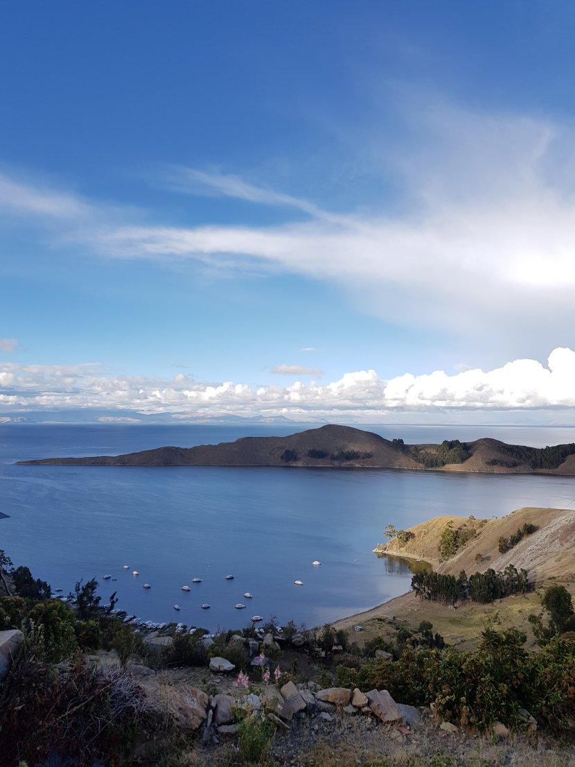 A tit in Lake Titicaca….